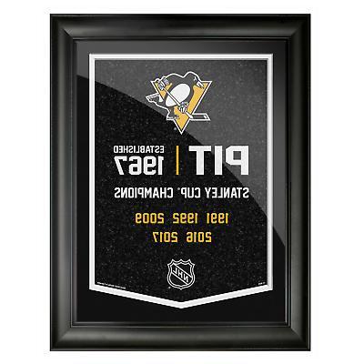 pittsburgh penguins 12x16 team empire framed artwork